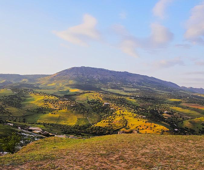 Paesaggio sul Medio Atlante, Ifrane - Marocco