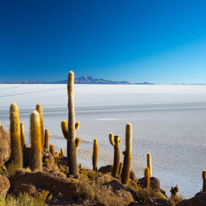 Exploring Tierra de Chile Image - 1