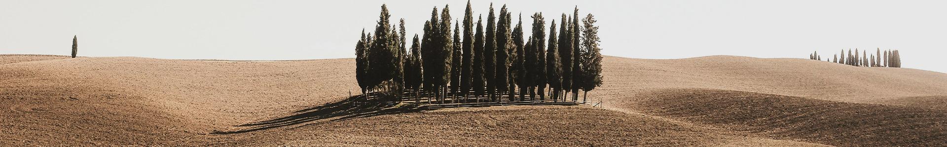 Borghi Toscana