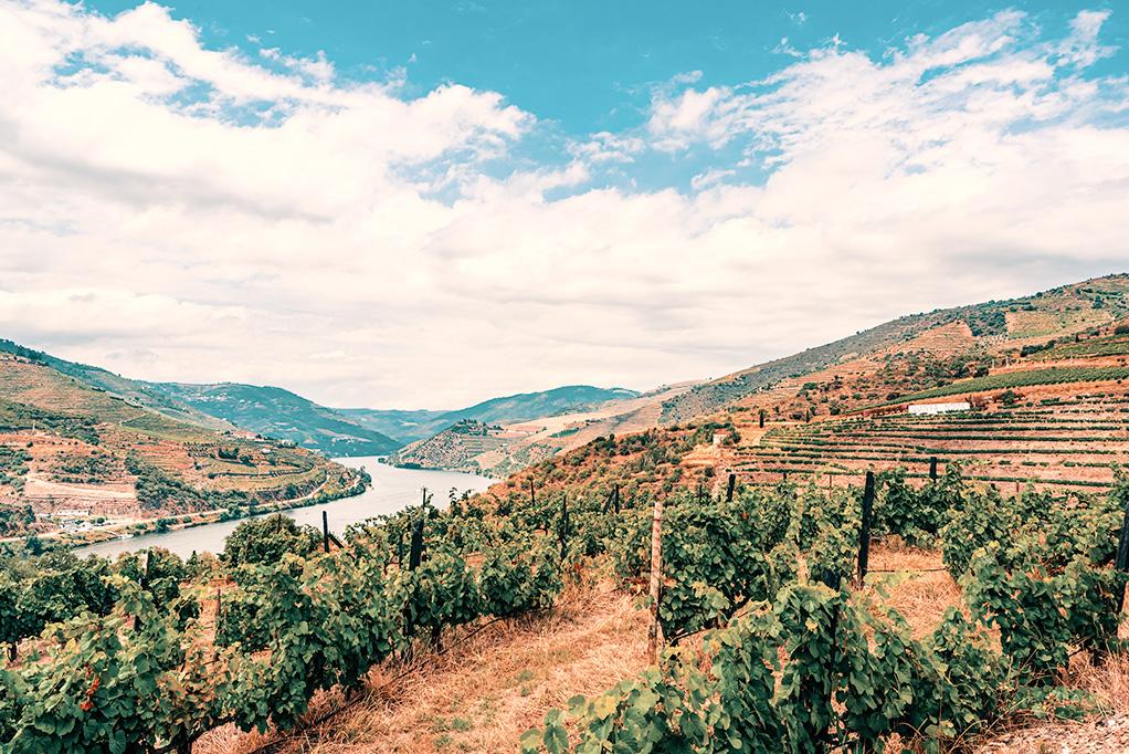 Porto e valle del Douro