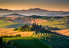 Between Umbria and Tuscany